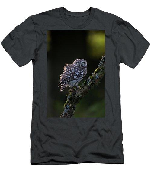 Backlit Little Owl Men's T-Shirt (Athletic Fit)