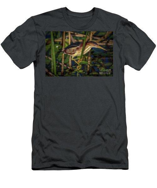 Balanced Perch Bittern Men's T-Shirt (Athletic Fit)