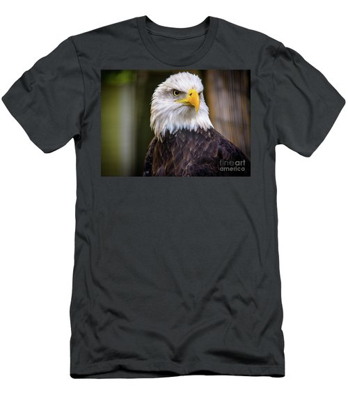 Bald Eagle Men's T-Shirt (Slim Fit) by Lisa L Silva