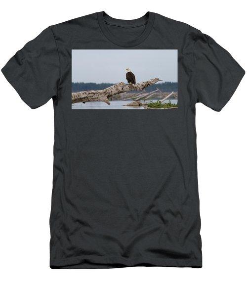 Bald Eagle #1 Men's T-Shirt (Athletic Fit)
