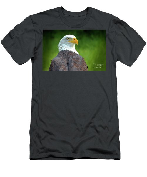 Bald Eagle Men's T-Shirt (Slim Fit) by Franziskus Pfleghart