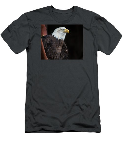 Bald Eagle Intensity Men's T-Shirt (Athletic Fit)