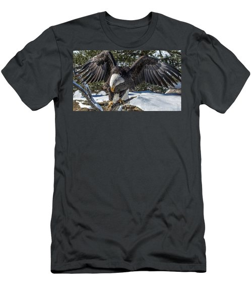 Bald Eagle Spread Men's T-Shirt (Athletic Fit)