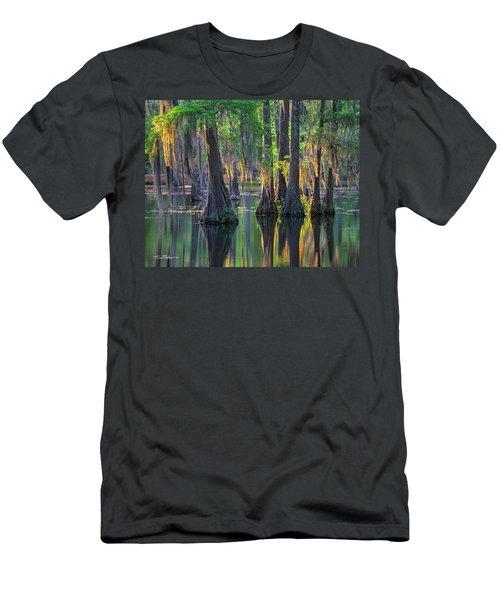 Baldcypress Trees, Louisiana Men's T-Shirt (Athletic Fit)
