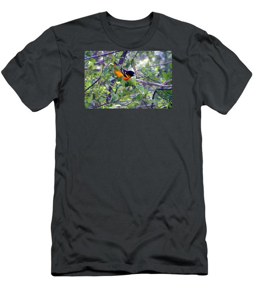 Baltimore Northern Oriole Men's T-Shirt (Slim Fit) by Susan  Dimitrakopoulos