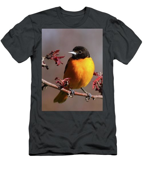 Baltimore Oriole II Men's T-Shirt (Athletic Fit)