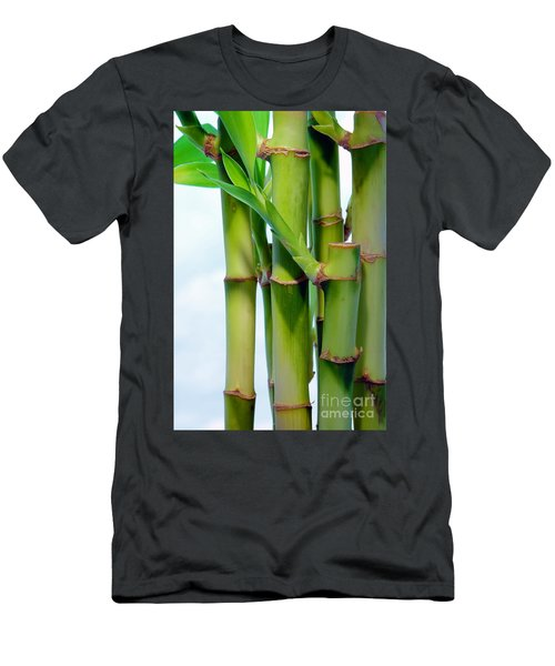 Bamboo And Sky Men's T-Shirt (Athletic Fit)