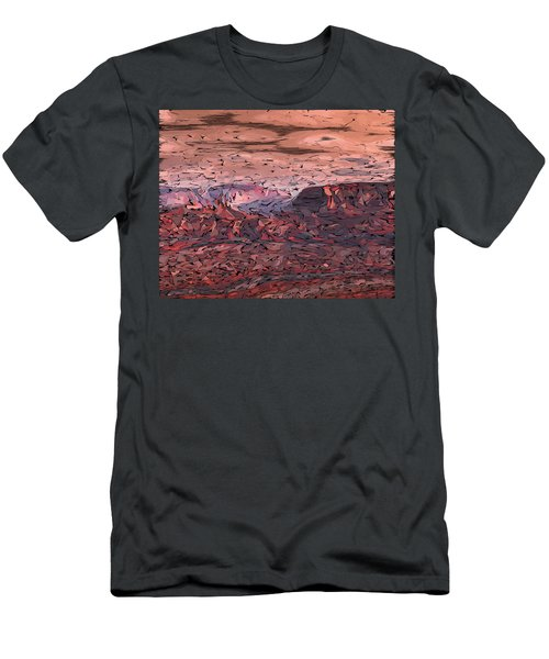 Banded Canyon Abstract Men's T-Shirt (Athletic Fit)