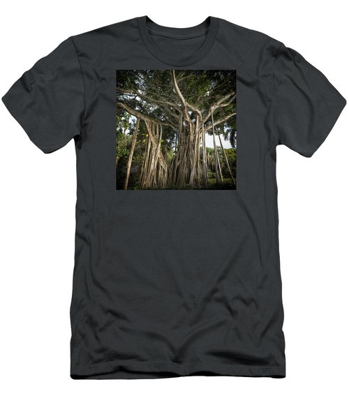 Men's T-Shirt (Athletic Fit) featuring the photograph Banyan Tree At Bonnet House by Belinda Greb
