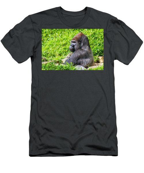 Baraka - Western Lowalnd Silverback Gorilla Men's T-Shirt (Athletic Fit)