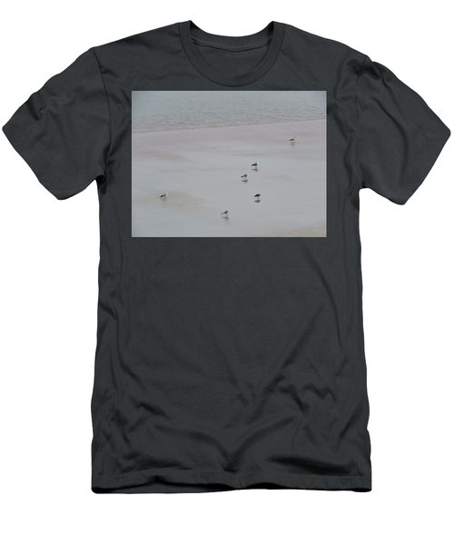 Beach Seagulls Men's T-Shirt (Athletic Fit)