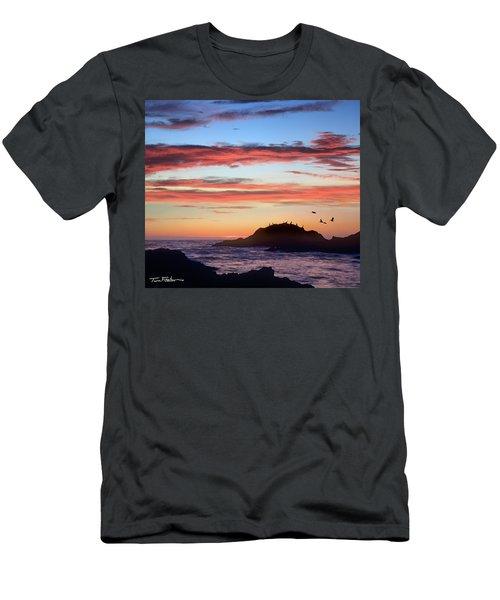 Bean Hollow Beach Men's T-Shirt (Slim Fit) by Tim Fitzharris