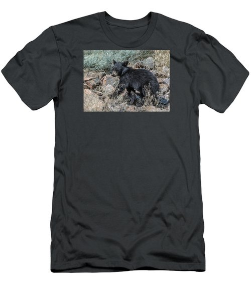 Bear Cub Walking Men's T-Shirt (Slim Fit) by Stephen  Johnson