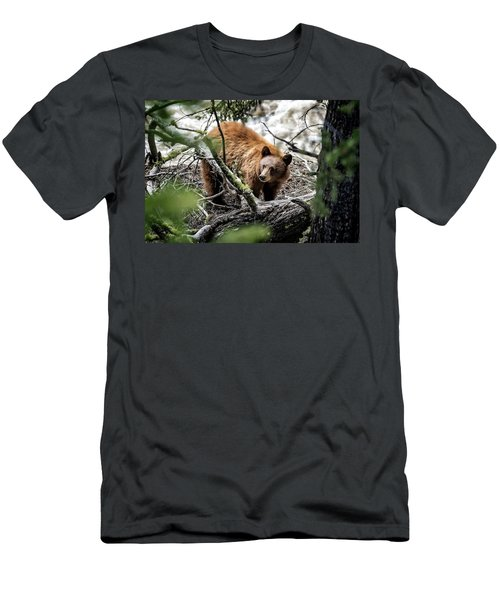 Men's T-Shirt (Athletic Fit) featuring the photograph Bear In Trees by Scott Read