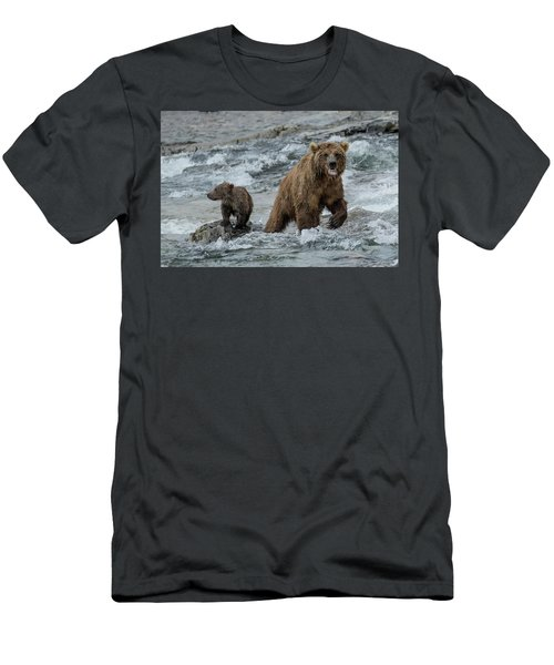 Bears Being Watchful  Men's T-Shirt (Athletic Fit)