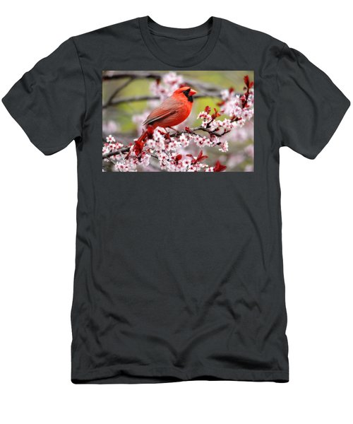 Beautiful Northern Cardinal Men's T-Shirt (Slim Fit) by Trina Ansel