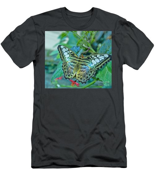 Beauty On Wings Men's T-Shirt (Athletic Fit)