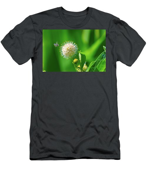Bee World Men's T-Shirt (Athletic Fit)