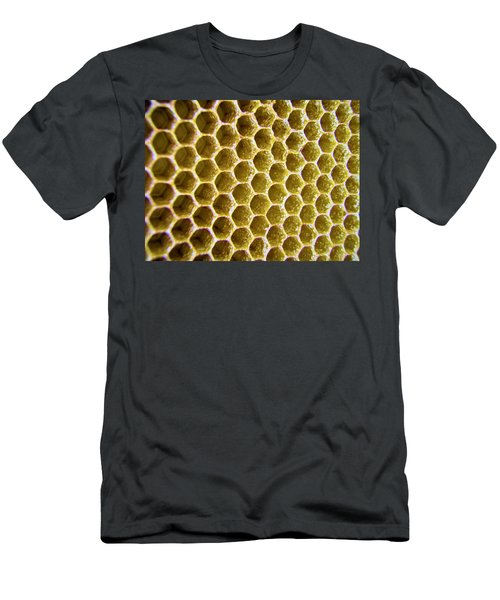 Bee's Home Men's T-Shirt (Athletic Fit)