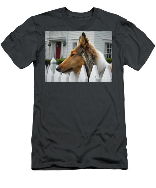 Bellingham Collie Men's T-Shirt (Athletic Fit)