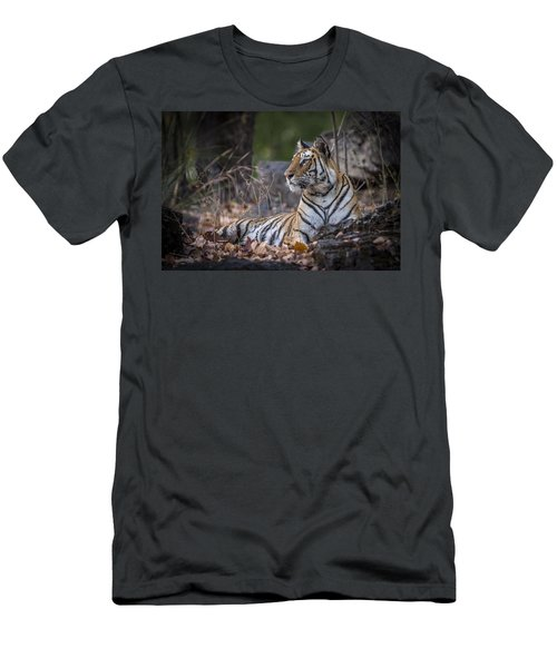 Bengal Tiger Men's T-Shirt (Athletic Fit)