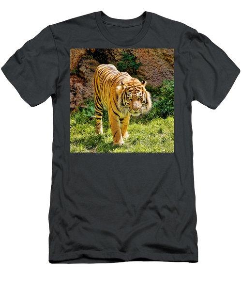 Bengal Tiger Men's T-Shirt (Athletic Fit)