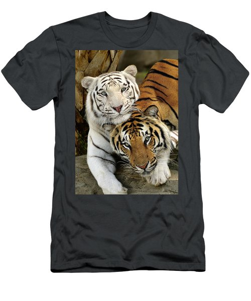 Bengal Tigers At Play Men's T-Shirt (Athletic Fit)