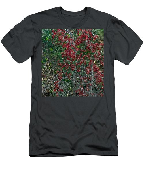 Berries In Styx Men's T-Shirt (Athletic Fit)