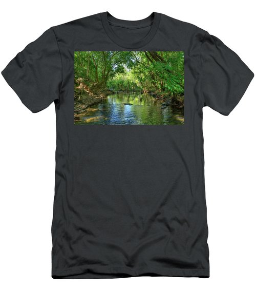 Berry Springs Men's T-Shirt (Athletic Fit)