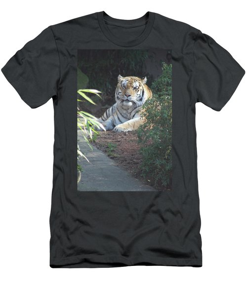 Men's T-Shirt (Slim Fit) featuring the photograph Beyond The Branches by Laddie Halupa