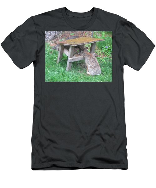 Big Eyed Rabbit Eating Birdseed Men's T-Shirt (Slim Fit) by Betty Pieper