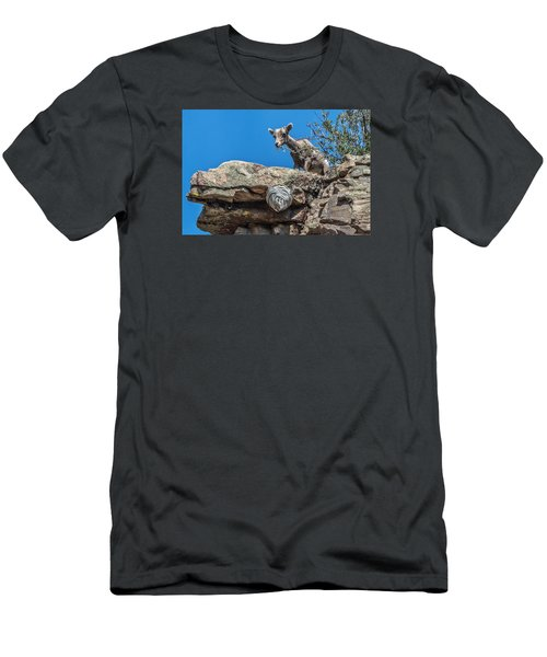 Big Horn Lamb Overlooking Hornets Nest Men's T-Shirt (Athletic Fit)