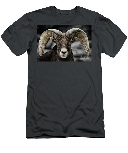 Bighorn Ram Men's T-Shirt (Slim Fit) by Brad Allen Fine Art