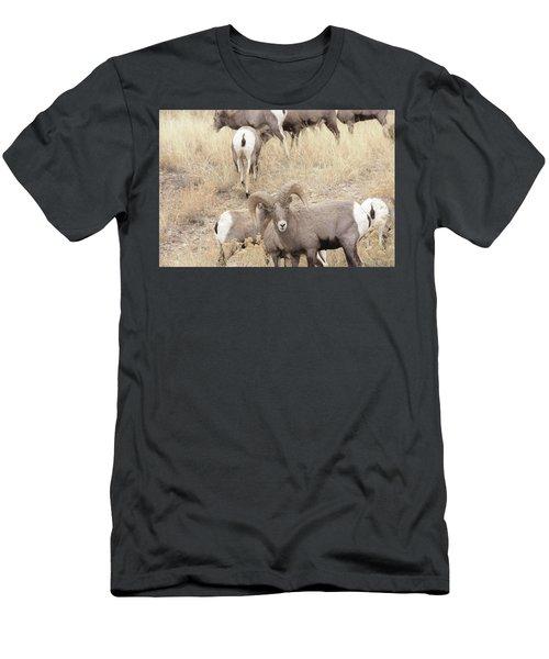 Bighorn6 Men's T-Shirt (Athletic Fit)