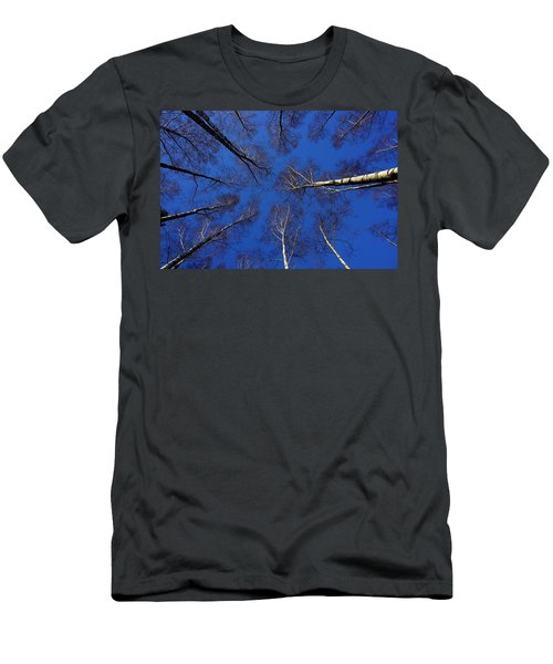 Birch Trees In Winter Men's T-Shirt (Athletic Fit)