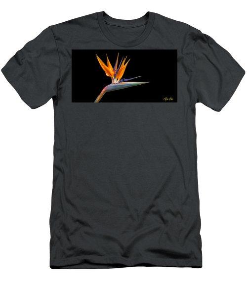 Bird Of Paradise Flower On Black Men's T-Shirt (Athletic Fit)