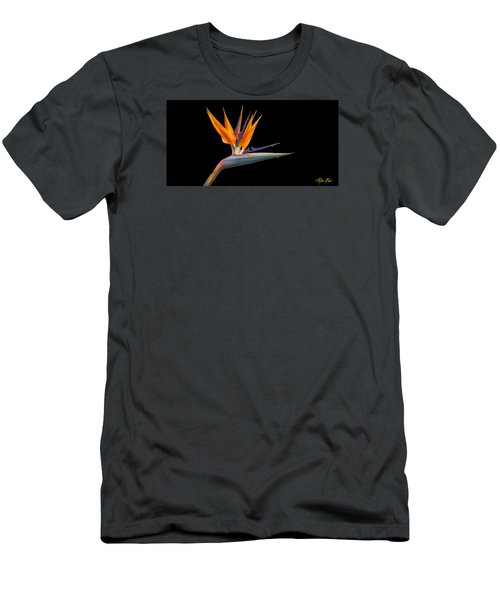 Men's T-Shirt (Athletic Fit) featuring the photograph Bird Of Paradise Flower On Black by Rikk Flohr