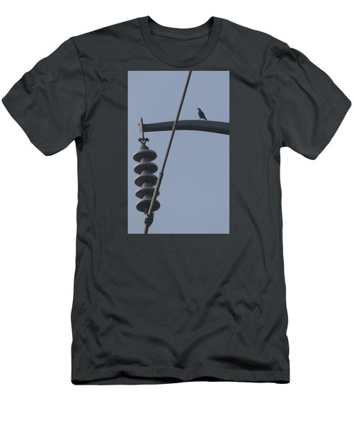 Bird On A High Wire Men's T-Shirt (Athletic Fit)