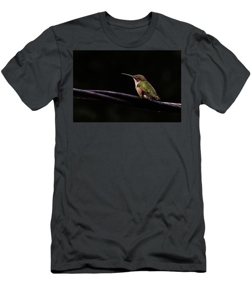 Bird On A Wire Men's T-Shirt (Athletic Fit)