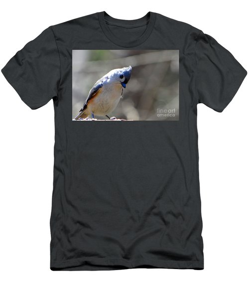 Bird Photography Series Nmb 7 Men's T-Shirt (Athletic Fit)