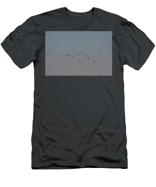 Birds And Airplane Men's T-Shirt (Athletic Fit)
