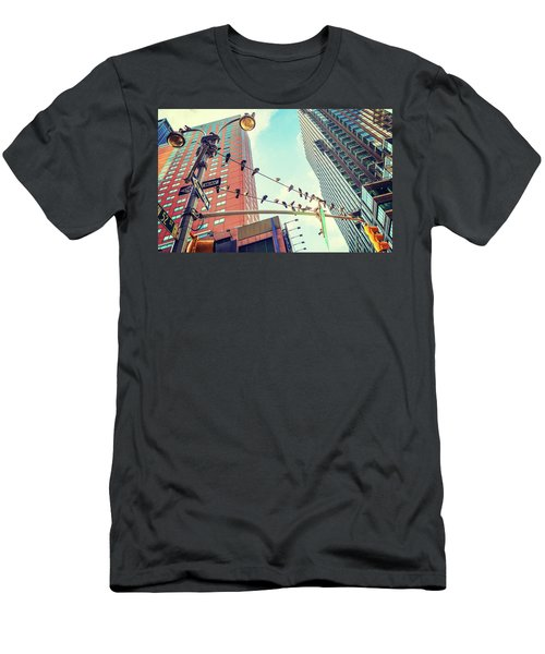 Birds In New York City Men's T-Shirt (Athletic Fit)