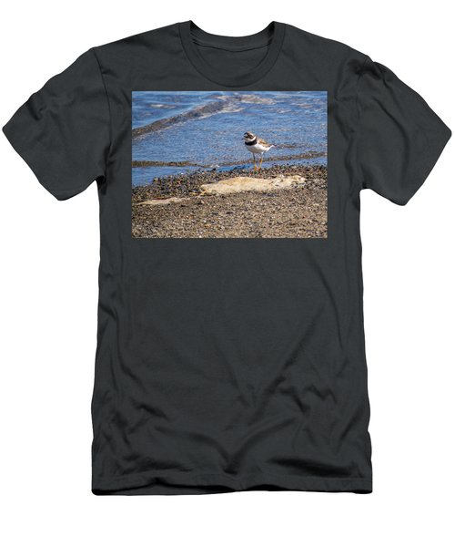 Birds Of Maine Men's T-Shirt (Slim Fit) by Trace Kittrell