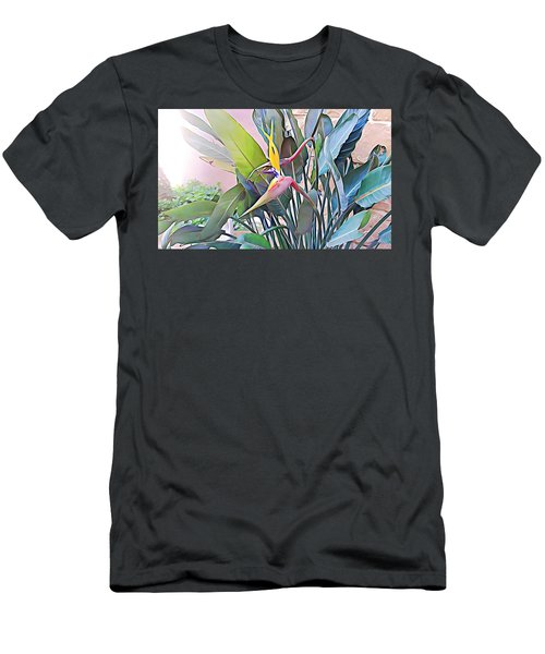 Birds Of Paradise  Men's T-Shirt (Athletic Fit)
