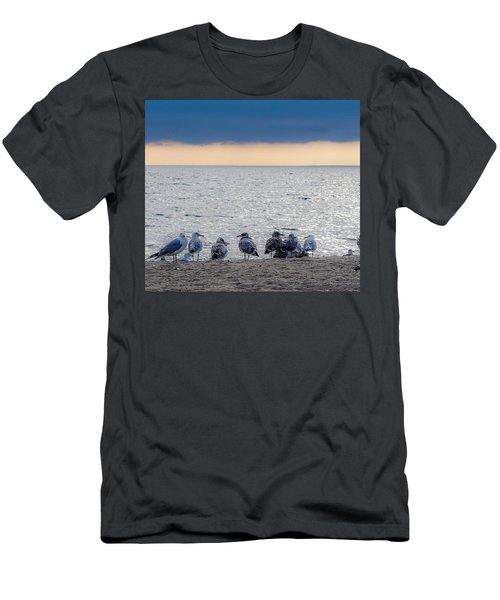 Birds On A Beach Men's T-Shirt (Athletic Fit)