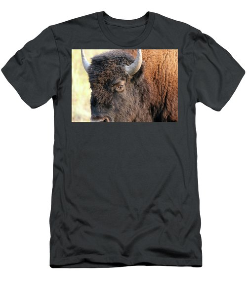Bison Head Study Men's T-Shirt (Athletic Fit)