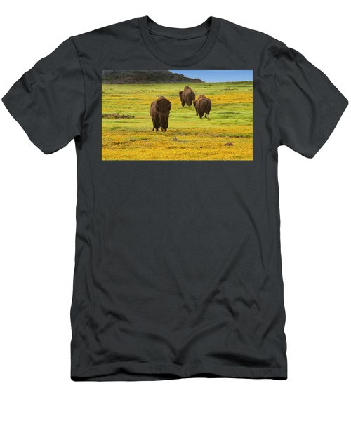 Bison In Wildflowers Men's T-Shirt (Athletic Fit)