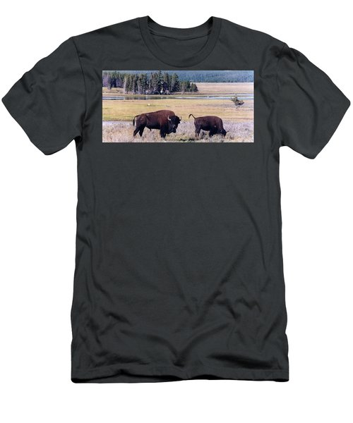 Bison In Yellowstone Men's T-Shirt (Athletic Fit)