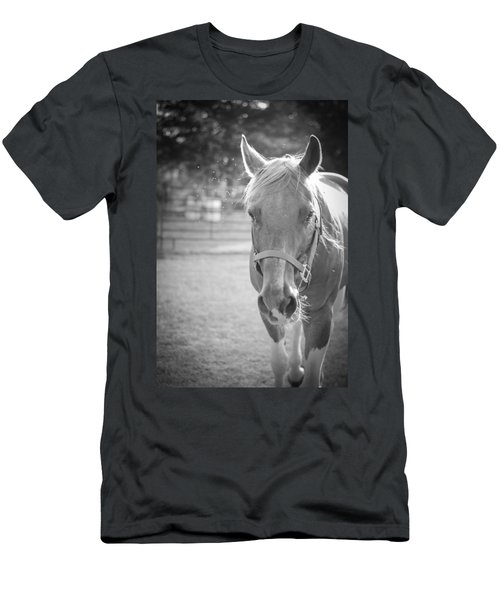 Black And White Portrait Of A Horse In The Sun Men's T-Shirt (Athletic Fit)