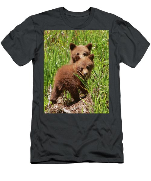 Black Bear Cubs Men's T-Shirt (Athletic Fit)